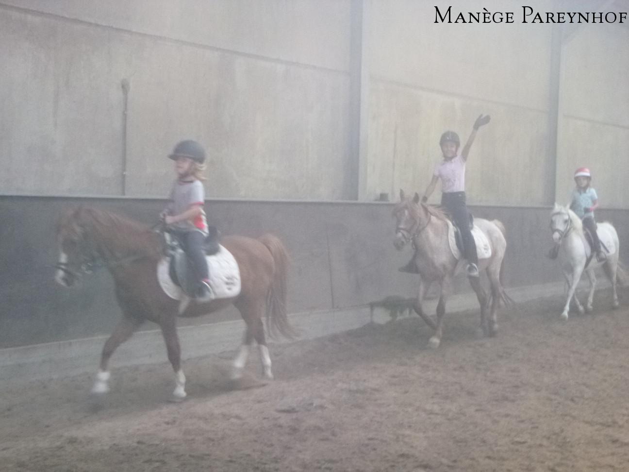 Manege Pareynhof - Ponykamp 2018