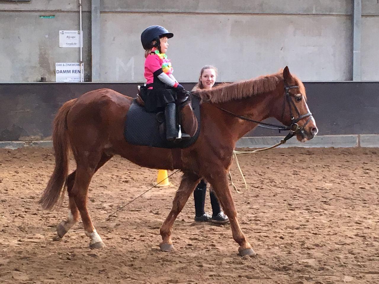 Ponycarnavaldag - 7 maart 2019
