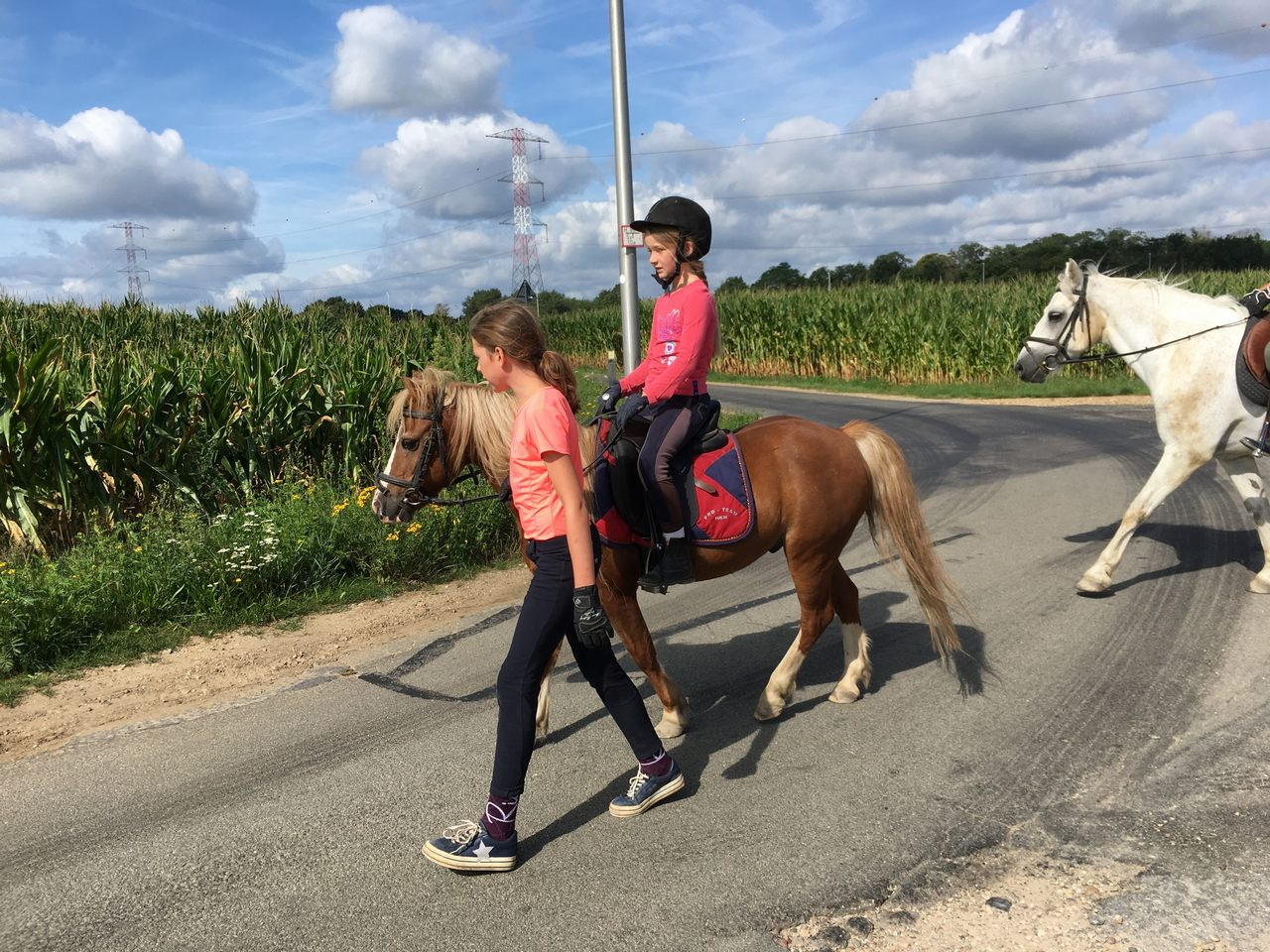 Ponykamp 2019 - Week 2